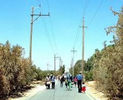 Syrian refugees walking on a road