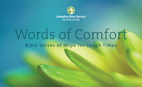 Words of Comfort Cover